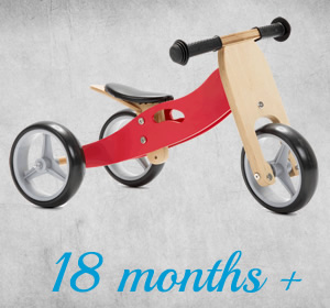 Mini 2 in  1 Balance Bike Trikes